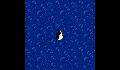 play Pengu wanats to fly