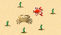 play Little Crab