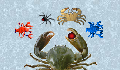 play CrabGame: Crab Lord's Demise