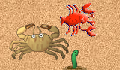play The Little Crab Game