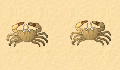 play 2 Player crab game