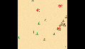 play Little Crab Game