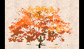 play Falling Leaves Game