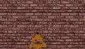 play Save the teddy.