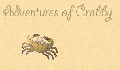 play Adventures of Crabby