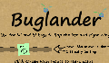 play buglander