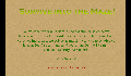 play Survive into the Maze!