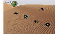 play Cross the Desert